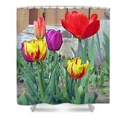 Tulip Mixture Shower Curtain