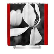 Tulip Monocrhome Shower Curtain