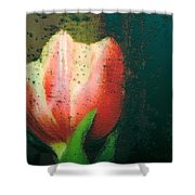 Tulip Of Love Shower Curtain