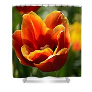 Tulip On Fire Shower Curtain