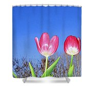 Tulip Panorama Shower Curtain