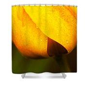 Tulip Spade Shower Curtain