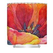 Tulip Splendor Shower Curtain