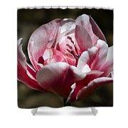 Tulip Surprise Shower Curtain