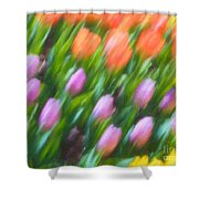 Tulip Swipe Shower Curtain