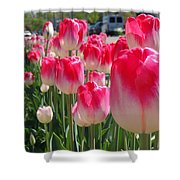 Tulip Time 2017 Shower Curtain