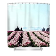 Tulip Town 10 Shower Curtain