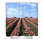 Tulip Town 12 Shower Curtain