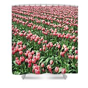 Tulip Town 14 Shower Curtain