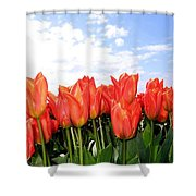 Tulip Town 17 Shower Curtain