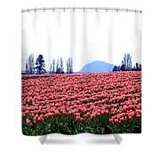 Tulip Town 3 Shower Curtain