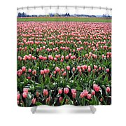 Tulip Town 5 Shower Curtain
