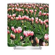 Tulip Town 8 Shower Curtain