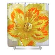 Tulip Tree Flower Shower Curtain