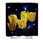 Tulip Twinkle Shower Curtain