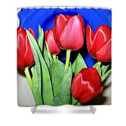 Tulipfest 1 Shower Curtain