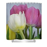 Tulips #2 Shower Curtain