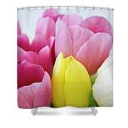 Tulips #3 Shower Curtain