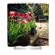 Tulips And Bench Shower Curtain