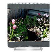 Tulips And Bluebells Shower Curtain