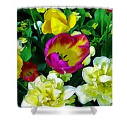 Tulips And Flowers  Shower Curtain