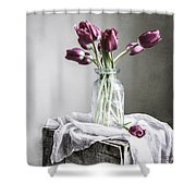 Tulips And Light Shower Curtain