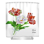 Tulips And Pink White Peony Shower Curtain
