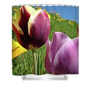 Tulips Artwork Tulip Flowers Spring Meadow Nature Art Prints Shower Curtain