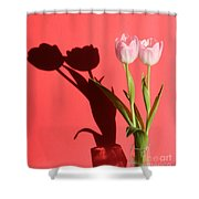 Tulips Casting Shadows Shower Curtain