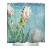 Tulips Day Shower Curtain