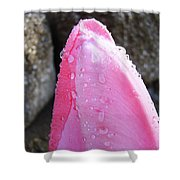 Tulips Flowers Artwork Tulip Flower Art Prints Macro Floral Art Shower Curtain