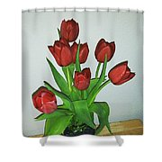 Tulips For You Shower Curtain