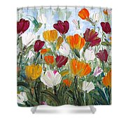 Tulips Garden Shower Curtain