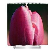 Tulip's Handshake Shower Curtain