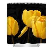 Tulips - Id 16235-220254-2672 Shower Curtain