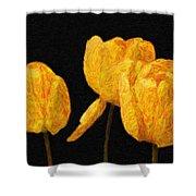 Tulips - Id 16235-220512-0422 Shower Curtain