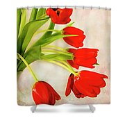 Tulips In A Vase Shower Curtain