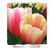 Tulips In Soft Pastels Shower Curtain