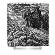 Tulips In The Alps Black And White Shower Curtain