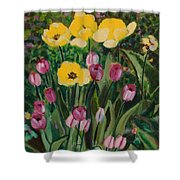 Tulips In The Capitol 2 Shower Curtain