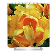 Tulips In Yellow Too Shower Curtain