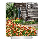 Tulips Lead To The Cabin Shower Curtain
