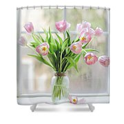 Tulips On The Window Shower Curtain