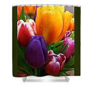 Tulips Smiling Shower Curtain
