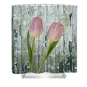 Tulips Two Shower Curtain