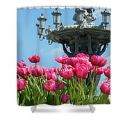 Tulips With Bartholdi Fountain Shower Curtain