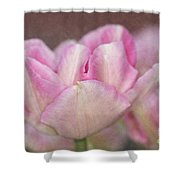 Tulips With Texture Shower Curtain
