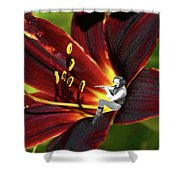 Tullflower Shower Curtain