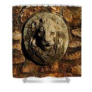 Tulsa Rose Garden Lion Fountain #1 Shower Curtain