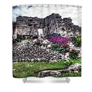 Tulum Temple Ruins No.2 Shower Curtain